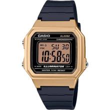 Часы CASIO W-217HM-9AVEF