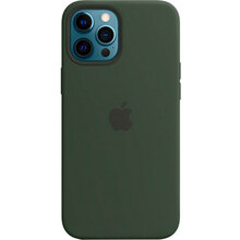Чехол APPLE iPhone 12 Pro Max Silicone MagSafe Cypress Green (MHLC3ZE/A8520/)