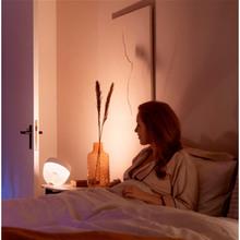 Настільна лампа Philips Hue Iris 2000K-6500K Color BT, DIM White (+929002376101)